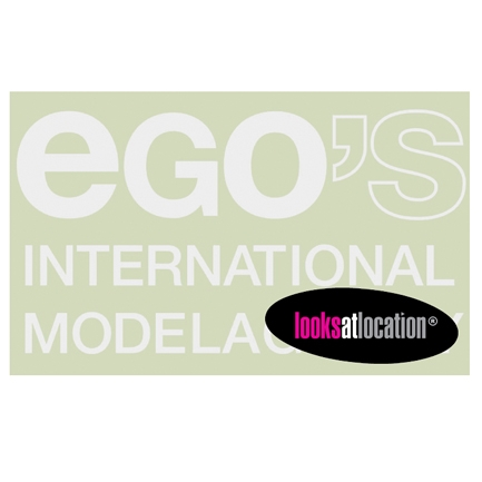 Role Models/Ego's Models